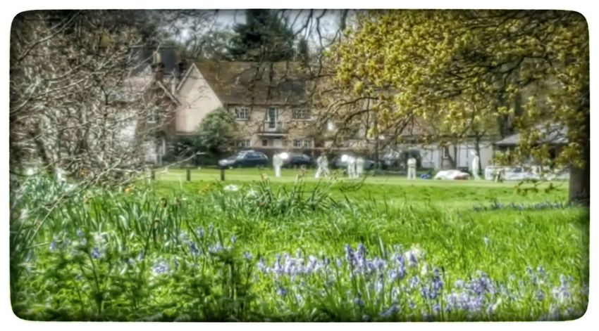 First Ball Of The Season Cricket! Cricketer Village Life Pub Lunch Bluebells Hampshire