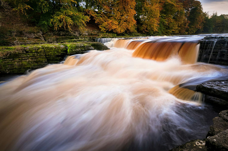 Aysgarth Falls, Yorkshire Dales National Park, North Yorkshire, UK. Waterfall Tree Scenics Blurred Motion Long Exposure Beauty In Nature Motion Nature Outdoors Landscape Mtphotography HDR Addicted2walking Hdri Landscapes Naturelover Outdoor Photography Photography Nature Non-urban Scene