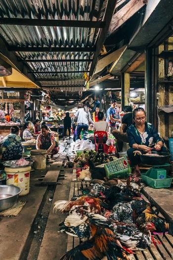 Kampot Fresh