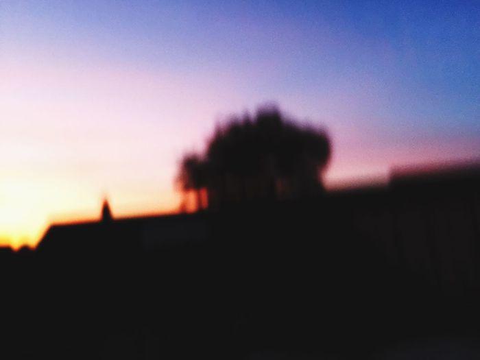 Bluryyy. 🌟🌄