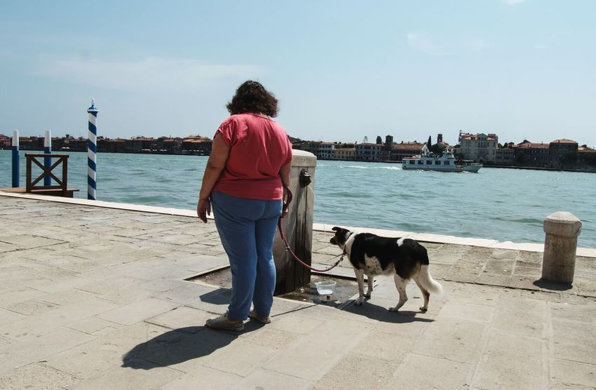 Doglife Venice, Italy Scenery Shots The Street Photographer - 2017 EyeEm Awards Melancholic Cityscapes