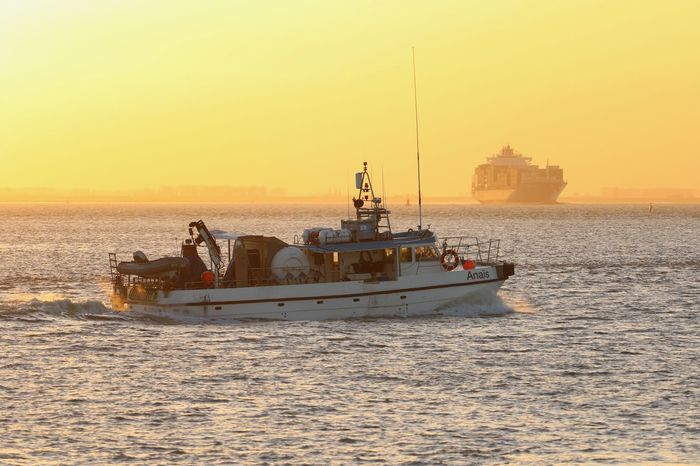 Maritime Schelde Transportation Canon Canonphotography Maritime Photography Ships Sunset