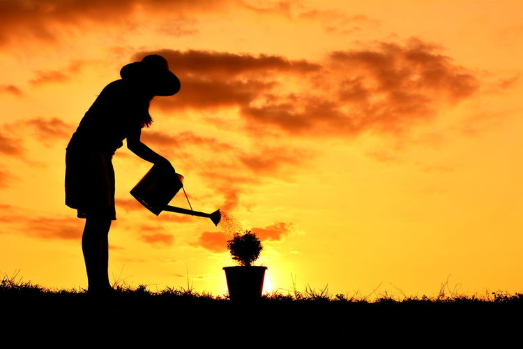 Silhouette of woman watering pot plant at sunset