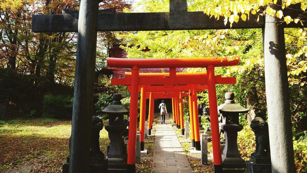 Japanese Culture Japanese Style