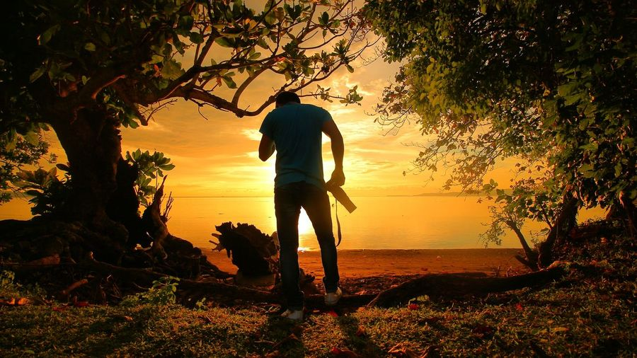 Silhouette man standing on tree at beach during sunset