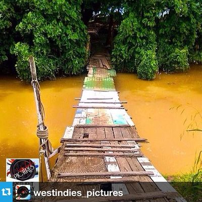 Repost from @westindies_pictures with @repostapp ✨🙏🙏✨ Thank you !!! --- . ▪️ . SPOTLIGHT OF THE DAY .▪️ ✦✦✦✦✦✦✦✦✦✦✦✦✦✦✦✦✦✦✦ ➡️ Le : 8 March 2014 ✦✦✦✦✦✦✦✦✦✦✦✦✦✦✦✦✦✦✦ 🏆 Photo by : @duppy__kankera 📍 Localisation : GRENADA ✦✦✦✦✦✦✦✦✦✦✦✦✦✦✦✦✦✦✦ 🔴🔴  OFFICIAL TAGS  🔴🔴 📷 Westindies_pictures 👥 Westindies_people 🏁 Westindies_bnw 🏯 Westindies_architecture 🌆 Westindies_landscape 🌅 Westindies_sunset 🍀 Westindies_nature 🎨 Westindies_colors 👹 Westindies_carnival ✅NEW✅ ✦✦✦✦✦✦✦✦✦✦✦✦✦✦✦✦✦✦✦ 🔴 Tag suppléant : WestIndies ✦✦✦✦✦✦✦✦✦✦✦✦✦✦✦✦✦✦✦ 👏 CONGRATS & REPOST IT ! 🔄 ✦✦✦✦✦✦✦✦✦✦✦✦✦✦✦✦✦✦✦ ☆ Founder : @FwaiizTwoopiical ★ Admins : @Deedjii & @Shayniz_l ✦✦✦✦✦✦✦✦✦✦✦✦✦✦✦✦✦✦✦  Martinique  Guadeloupe  Islandlife  WestIndies  Westindies_pictures  Frenchwestindies ⃣caribbean ⃣phototag_it ⃣shotaward ⃣caribbean ⃣picoftheday ⃣best_photogram
