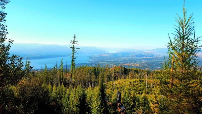 Landscape Green Nature Lake View True Beauty Bright Sky City View  Summer ☀ Kelowna Natural Beauty Landscapes Majestic Nature Rich Colors Okanagan Valley First Eyeem Photo Eyeem Best Shots - Canada The Great Outdoors With Adobe