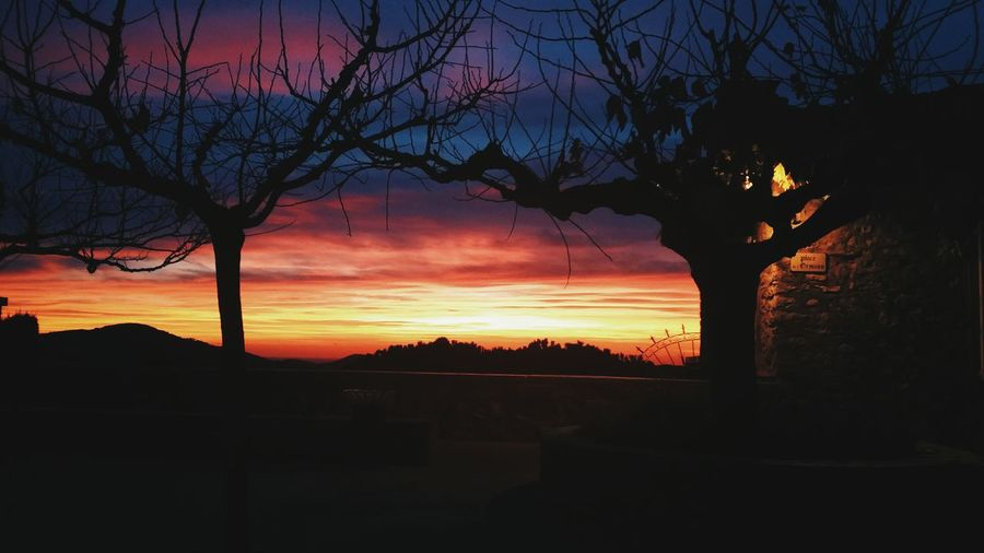 Sunset Tree Silhouette Nature Beauty In Nature Sky Landscape Dramatic Sky Romantic Sky Outdoors No People Photography Photooftheday Tourism Castellet Tranquility Photo Nature Neighborhood Map