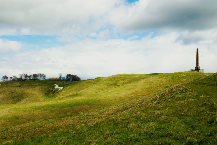 Scenic view of grassy hill against cloudy sky
