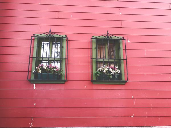 Window Pink Color Flower No People Artistic Art EyeEm Postcode Postcards