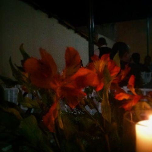 Flores para celebrar el amor. Que alegría siento @copcita1 SanabriaMendoza