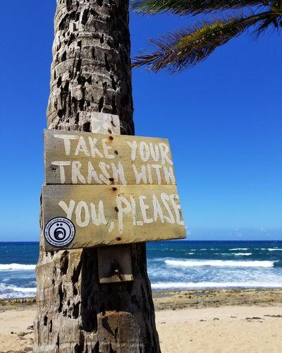 Please Puerto