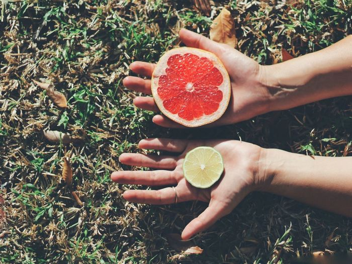 Cropped hands of woman with citrus fruits over grass