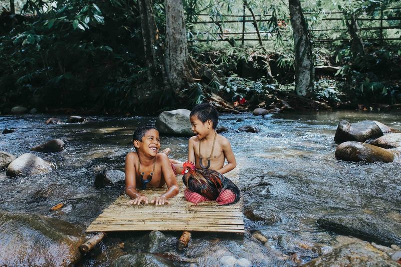 Boys with rooster on wood in stream