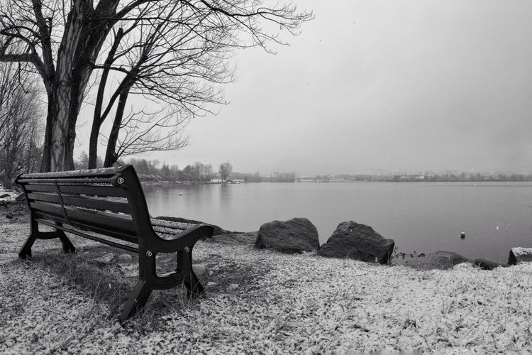 Empty bench by bare tree by lake against sky