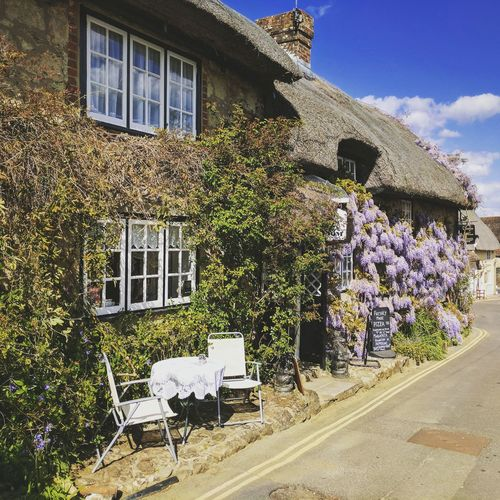 Isle Of Wight  Cottage Tea Room Godshill Hampshire Historical Building Flower Outdoors Building Exterior First Eyeem Photo