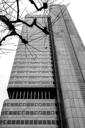 Frankfurt Am Main Stand Out From The Crowd Architecture Skyscrapers Tower Hochhaus