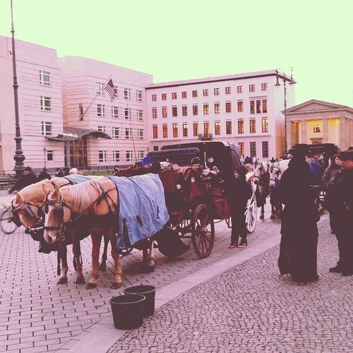 Kutsche am Brandenburgertor - Berlin