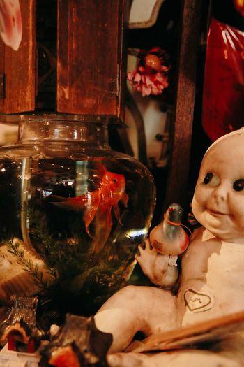 eccentric vintage shop Vintage Shop Vintage Golden Fish Doll Eccentric