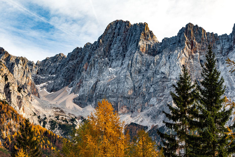 In the Julian Alps Alpine Alps Autumn Autumn Colors Beauty In Nature Cold Temperature Day Geology Julian Alps Landscape Low Angle View Mountain Mountain Peak Nature Outdoors Pine Pine Woodland Scenics Slovenia Tranquility Tree