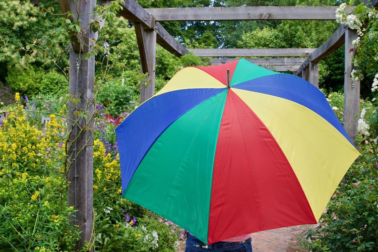 Person with colorful umbrella standing on pathway in yard