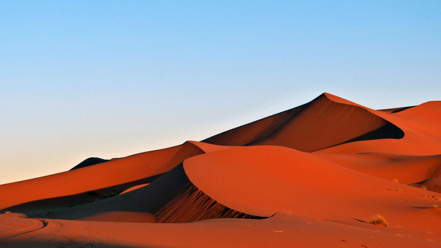 Red desert at sunset Desert Sun Sunset Heat Landscape Background Tourist Blue Shadow Red Day Outdoors Tranquility Sand Hot Africa Clear Sky Dry Sahara Scenics Beauty In Nature Sand Dune Sharp Edges Tranquil Scene Scenics - Nature