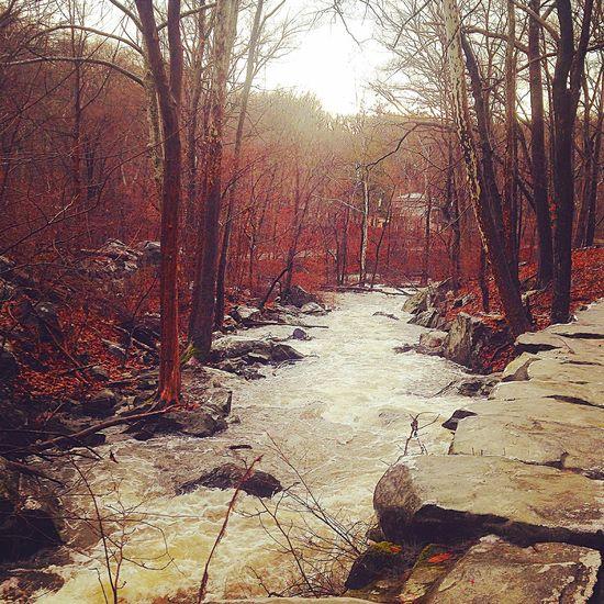 A river runs through it Trail Running