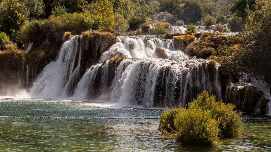 Croatia Beauty In Nature Forest Krka National Park Nature Outdoors River Tree Water Waterfall