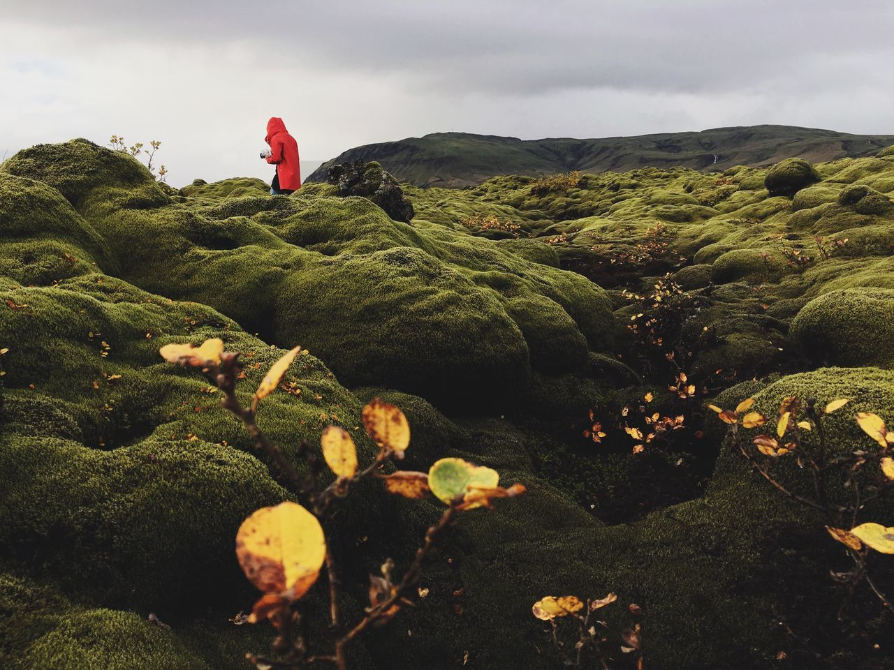 Person standing on moss covered rocks against sky