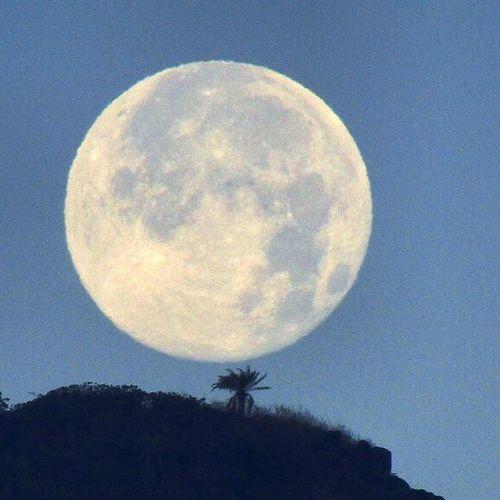 Full moon catch... Lavasa Moonlover Lunar Gratitude