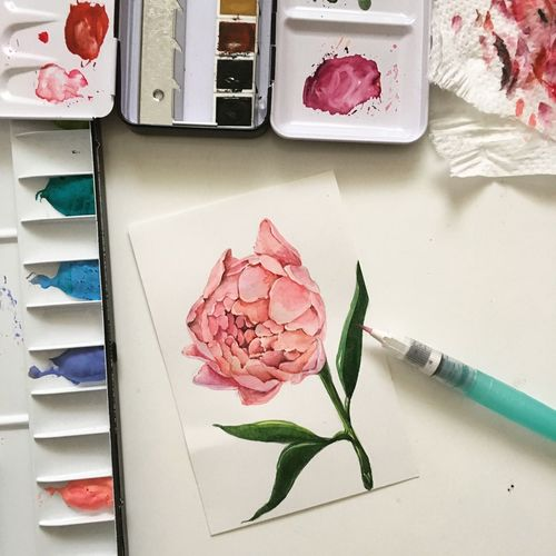 ☺️ Peony  Water Colour Drawing Flower Drawing