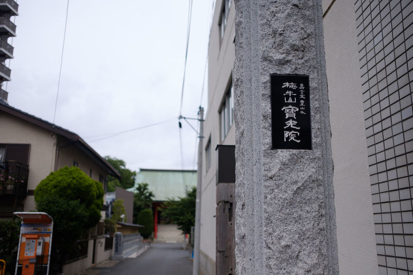 FUJIFILM X-T2 Japan Japan Photography Matsudo Fujifilm Fujifilm_xseries Temple Temple Architecture X-t2 お寺 松戸