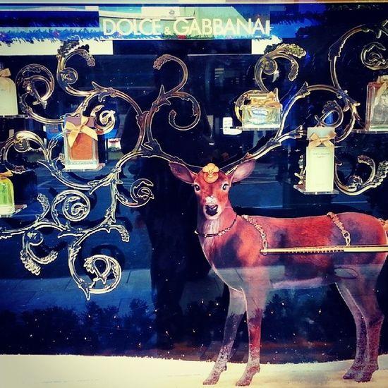 Dolce & Gabbana Window Display Dolceandgabbana  Christmastime christmasdisplay deer reindeer shopping