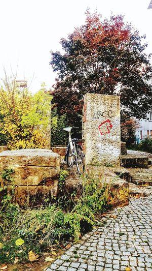 Bike abandoned