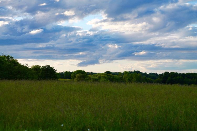Open Space Open Sky Nature Photography Peaceful View