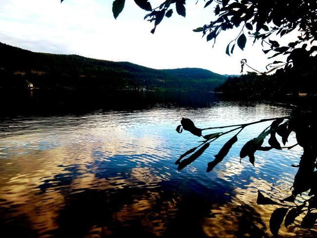 Lake Reflection Landscape Outdoors Photographie  EyeEm Gallery Eyem Gallery Background Travelphotography Germany Beauty In Nature Photography Blackforest Schwarzwald Titisee Titisee Lake Titiseeneustadt Hochschwarzwald Travel Photography