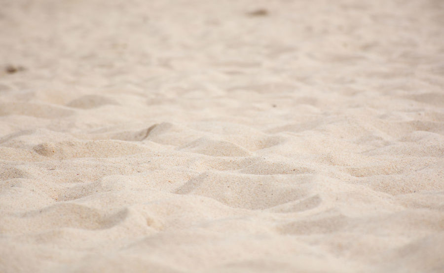 Backgrounds Beach Beach Sand Beauty In Nature Close-up Day Full Frame Nature No People Outdoors Park Pattern Salt - Mineral Sand Sand Beack Sand Park Sand Patterns Sand Texture