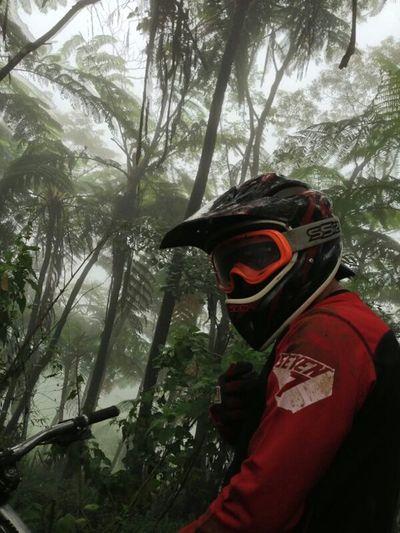 Flora INDONESIA Mountainbike Likeforlike Downhill Bike Traill