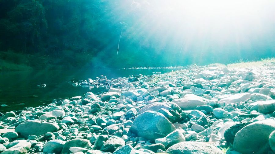 Uma bela foto tirada à beira de um rio e que mostra uma paisagem exótica e exuberante No People Water Nature Outdoors Sky Day Blue Sunlight Underwater Bubble Sea Beauty In Nature Freshness Fragility Sea Life Close-up UnderSea First Eyeem Photo