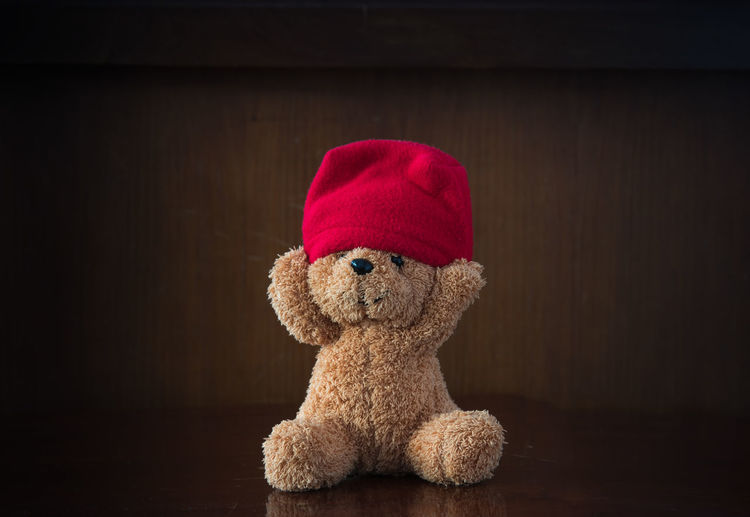 Animal Representation Art And Craft Brown Close-up Creativity Flooring Hat Home Interior Indoors  No People Red Representation Single Object Softness Still Life Stuffed Toy Teddy Bear Toy Toy Animal Wood - Material