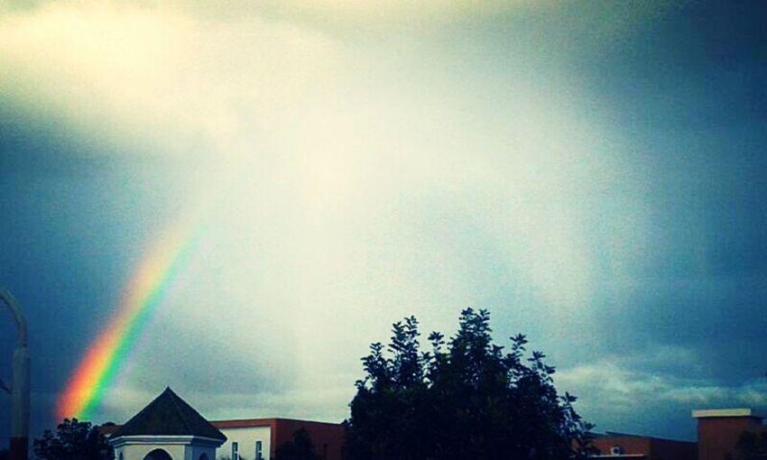 Arc En Ciel Rainbow Sky Hugging A Tree Conected With Nature <3