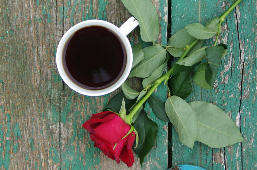 Bench, Coffee, Red Rose, Bench, Water, People, Background, Cold, Filter, B&w Rose, Beauty In Nature Coffee Cup Cup. Directly Above Drink Flower Flower Head Food And Drink Freshness Green Color Nature Outdoors Plant Table Wood - Material Wood. Panelling