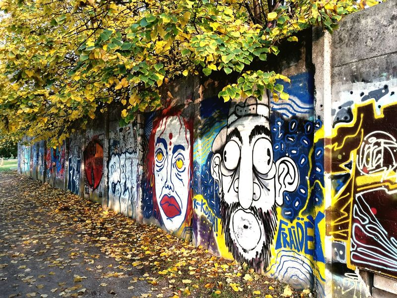 FRAIDEY Graffiti Street Art Street Photography Creativity Leaves Multi Colored Autumn Colours Outdoors Cycle Path No People Urban Landscape Urban Exploration Urban Lifestyle EyeEm Selects