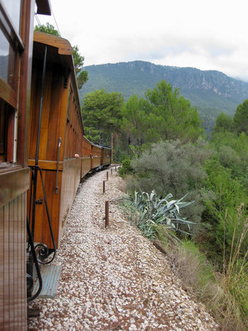 Train journey through Majorca Day Journey No People Outdoors Rail Train Train Carriages Train Journey Train Tracks Transport Transportation Tree