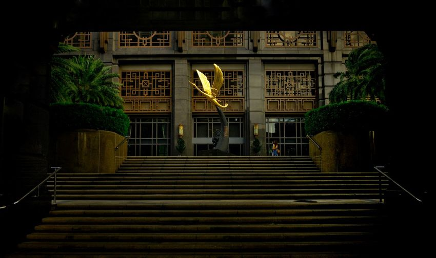 Take Off Crane - Bird Bird Architecture Built Structure Staircase Building Exterior Illuminated No People Plant Steps And Staircases Building The Way Forward Outdoors Entrance