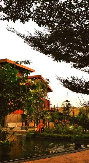 In The Park Park Enjoying The Breeze Serpong Bsd City