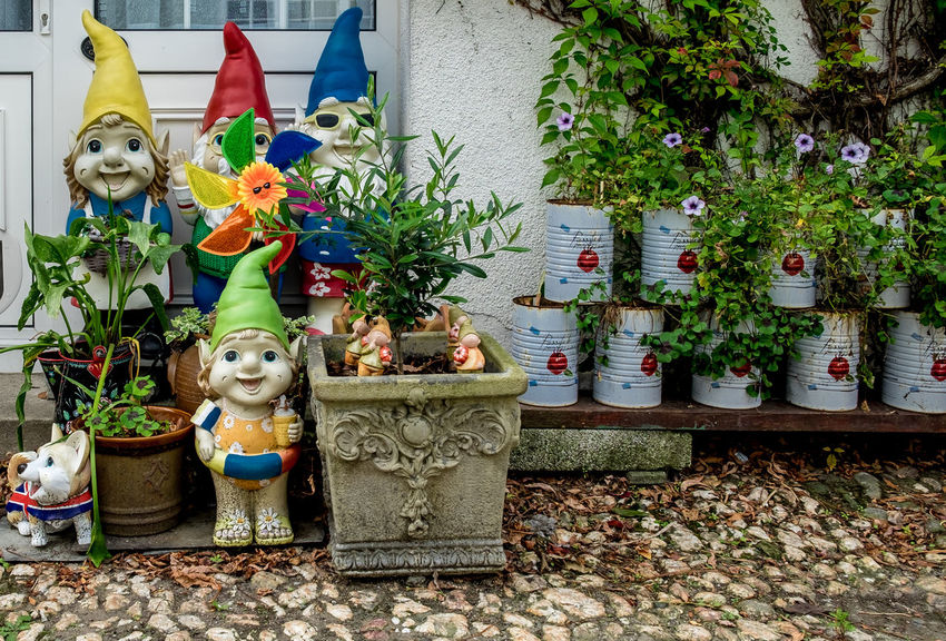 Gnomes, Flushing, Cornwall Statue Gnomes Gnomes Of EyeEm Gnomesville Fujfilmxt10 Cornwall Flushing Cornwall