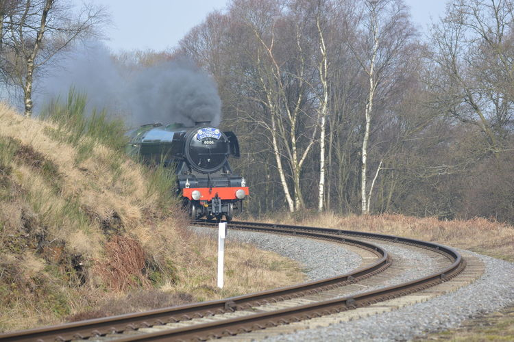Clear Sky Day Flying Scotsman Flyingscotsman Journey Land Vehicle Legend Mode Of Transport Mountain Northyorkshiremoorsrailway Nymr. On The Move Outdoors Public Transportation Rail Transportation Railroad Track Road The Way Forward Train Train - Vehicle Transportation Travel Tree Yorkshire