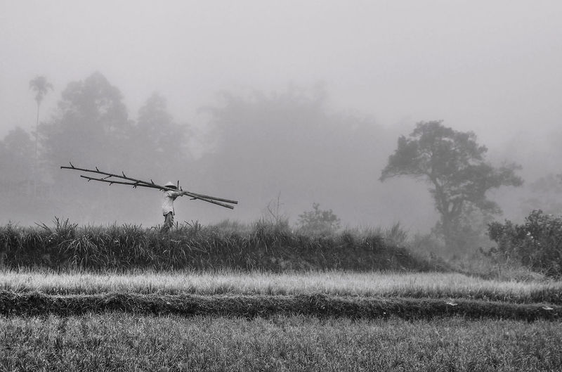 Man carrying wood in fog