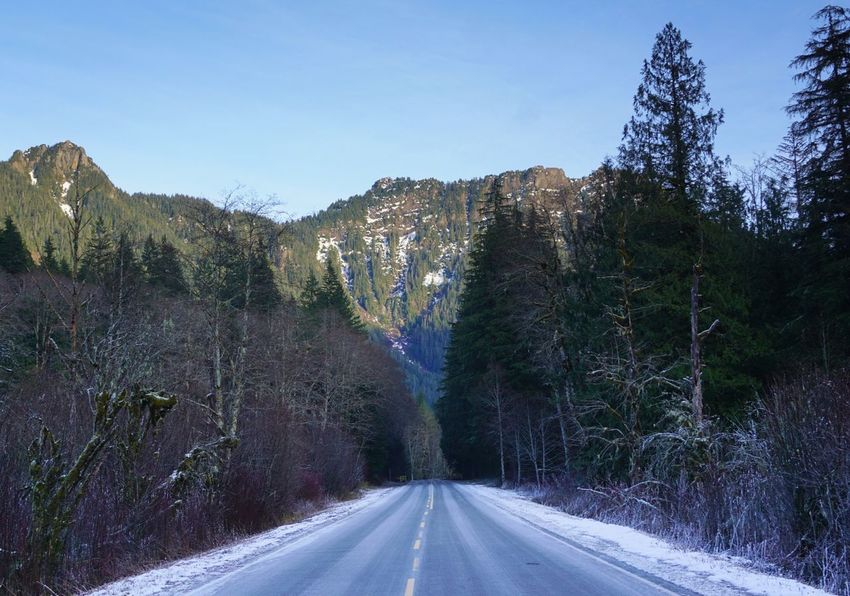 Icy roads Road The Way Forward Transportation Nature Tree Mountain Outdoors Day Clear Sky No People Scenics Beauty In Nature Landscape Sky Shades Of Winter The Traveler - 2018 EyeEm Awards